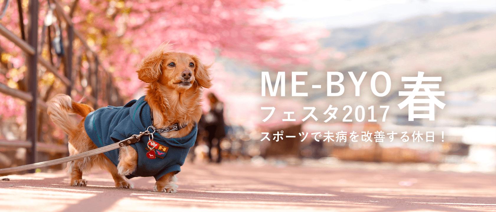 ME-BYOフェスタ2017春