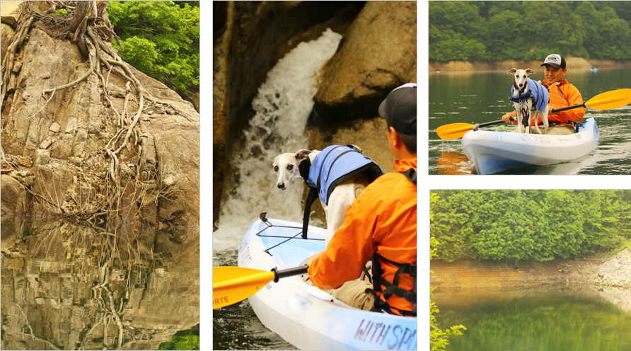 秘境の湖で愛犬とカヌー冒険