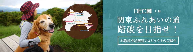 〜関東ふれあいの道〜踏破を目指せ!|運動不足解消プロジェクト【おでか犬】