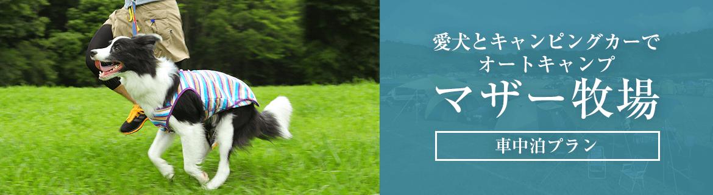 愛犬とキャンプ マザー牧場オートキャンプ場|車中泊プラン