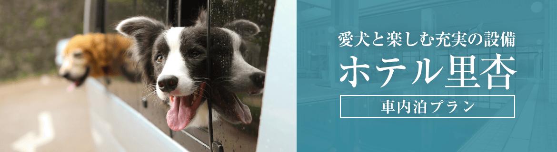 愛犬と楽しむ充実の設備「ホテル里杏」|車中泊プラン