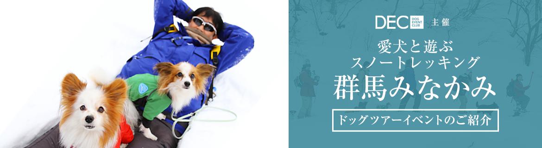 愛犬と遊ぶスノートレッキング in 群馬みなかみ|【おでか犬】