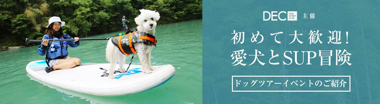 初めて大歓迎!愛犬とSUP冒険|【おでか犬】