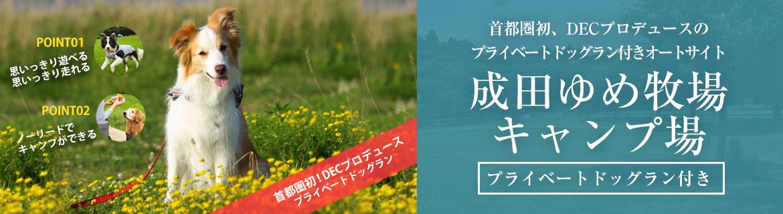 芝生が広がり、思いっきり走れる!成田ゆめ牧場キャンプ場|車中泊プラン