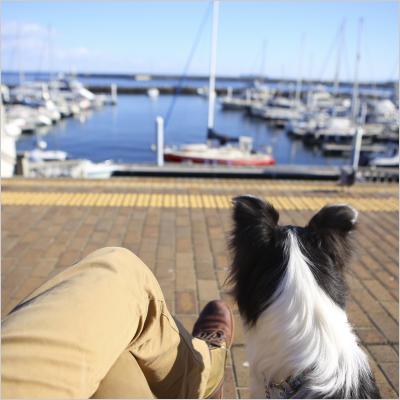 ヨットを眺めながらのんびり