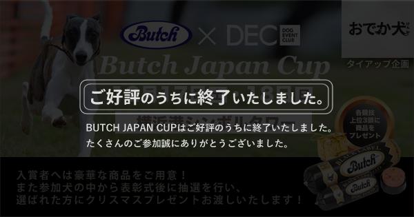 運動不足解消プロジェクト【ブッチ・ジャパンカップ】
