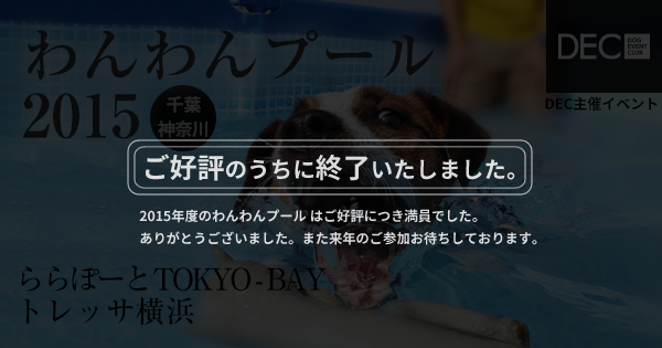 わんわんプール 2015|DOG SPORTS