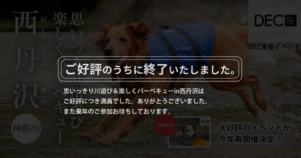思いっきり川遊び&楽しくバーベキューin西丹沢|DOG TOUR