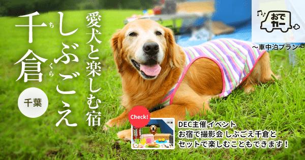 愛犬と楽しむ宿|しぶごえ千倉【おでか犬】