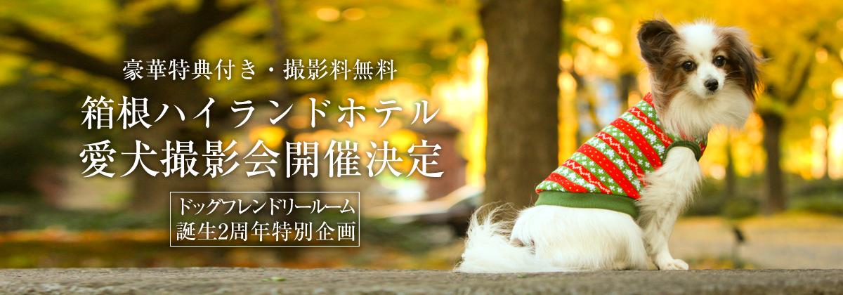 箱根ハイランドホテルでおでか犬|コラボレーションイベントのご紹介