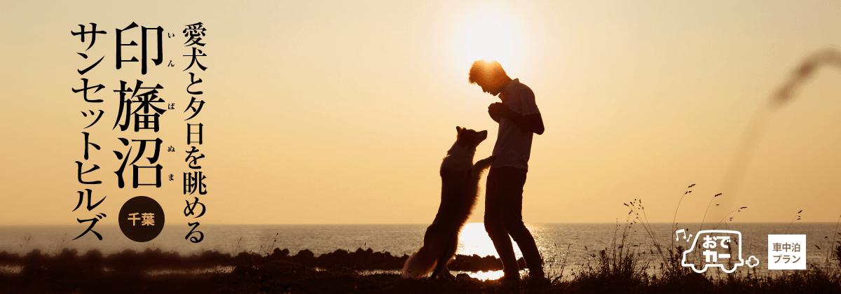 印旛沼サンセットヒルズ|愛犬と夕日を眺める|おでカーでおでか犬