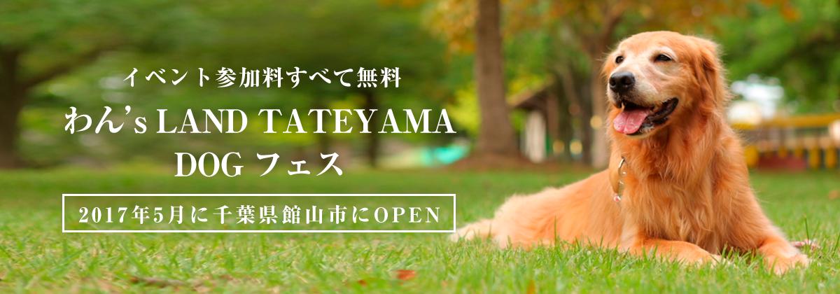わん's LAND TATEYAMA