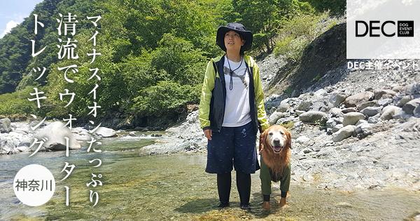 マイナスイオンたっぷり清流でウォータートレッキング |DOG SPORTS