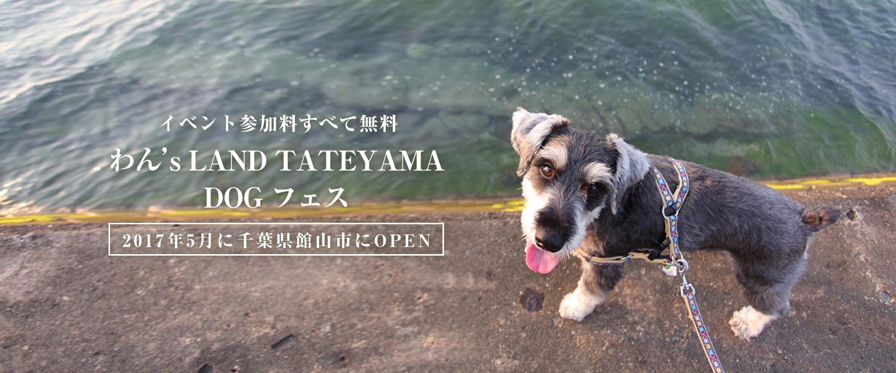 わん's LAND TATEYAMA愛犬撮影会